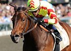 Turbulent Descent Headlines Acorn Field