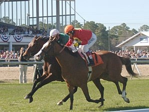 Karelian wins the 2010 Tampa Bay Breeders' Cup.