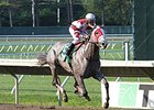 Cassatt won the 2014 Monmouth Oaks.