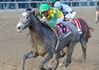 "O'Prado Again comes running to win the Remsen at Aqueduct.<br><a target=""blank"" href=""http://www.bloodhorse.com/horse-racing/photo-store?ref=http%3A%2F%2Fpictopia.com%2Fperl%2Fgal%3Fprovider_id%3D368%26ptp_photo_id%3D9754153%26ref%3Dstory"">Order This Photo</a>"