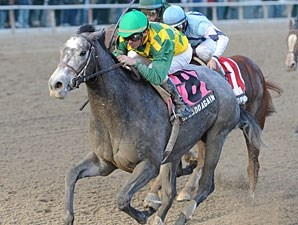 O'Prado Again wins the 2011 Remsen.