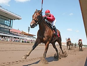 B J's Angel wins the 2013 MTA Stallion Auction Lassie Stakes.
