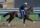 "Cleburne <br><a target=""blank"" href=""http://photos.bloodhorse.com/BreedersCup/2013-Breeders-Cup/Breeders-Cup/32986083_QMHXWK#!i=2859460037&k=kKPShgq"">Order This Photo</a>"