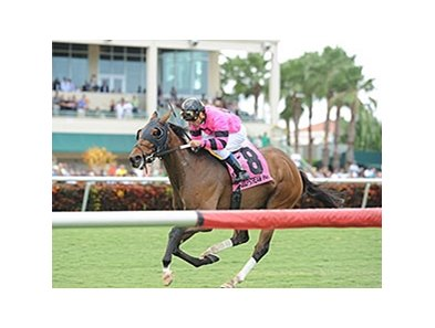Bad Debt