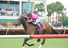 Bad Debt, Philly Ace Tropical Turf Topweights