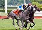 Secretariat winner Take the Points headlines the Jamaica Handicap.