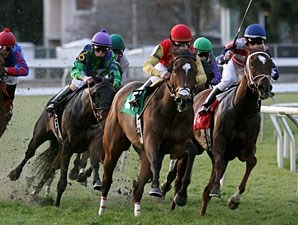 Forest Uproar wins the 2011 Marie Krantz Memorial.