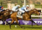Goldikova in the Breeders' Cup Mile 2009.