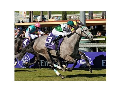 "Forever Together rolls to victory in the Breeders' Cup Filly & Mare Turf.<br><a target=""blank"" href=""http://www.bloodhorse.com/horse-racing/photo-store?ref=http%3A%2F%2Fpictopia.com%2Fperl%2Fgal%3Fprovider_id%3D368%26ptp_photo_id%3D6446658%26ref%3Dstory"">Order This Photo</a>"