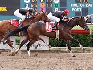 Im a Bear wins the 2012 Texas Stallion Series Got Koko Division.