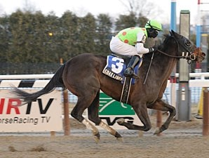 Coax Liberty wins the 2011 Dearly Precious.