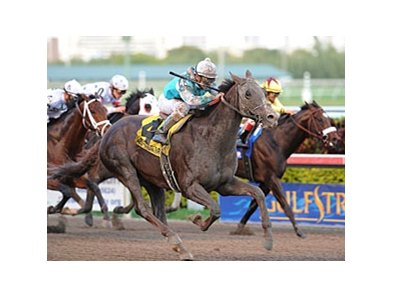 "Giant Oak overtakes the pacesetters to win the Donn Handicap.<br><a target=""blank"" href=""http://www.bloodhorse.com/horse-racing/photo-store?ref=http%3A%2F%2Fpictopia.com%2Fperl%2Fgal%3Fprovider_id%3D368%26ptp_photo_id%3D9395106%26ref%3Dstory"">Order This Photo</a>"