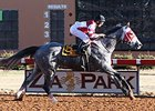 Cassatt dominates the Zia Park Oaks.