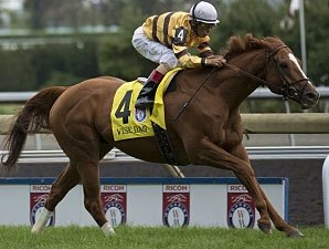Wise Dan Slips on 'Best Horses List'
