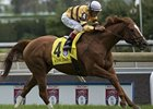 Slideshow: The Woodbine Mile 2013