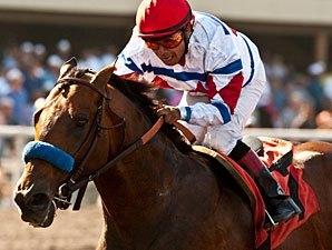 Grade I Winner First Dude Retired