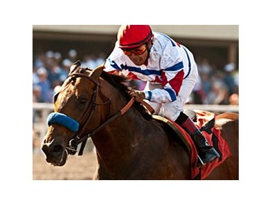 First Dude in the Hollywood Gold Cup.