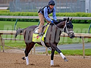 Vinceremos - Churchill Downs, April 25, 2014.