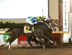 Humble Smarty wins the 2011 David M. Vance Stakes.