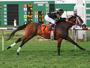 Optimizer Targets Fair Grounds Handicap