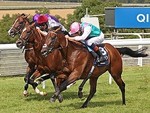 Kingman runs past Toronado and Darwin in the QUIPCO Sussex Stakes at Goodwood July 30, 2014.