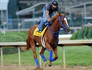 Summer Bird gallops at Churchill Downs on April 28