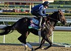 Merit Man