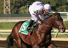 Purple Egg will start for the first time since April in the Gallant Bob Stakes.