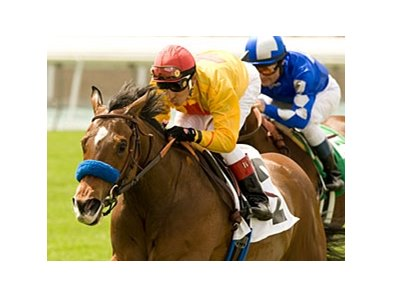 "Tuscan Evening will try to add Grade I winner to her resume in the Gamely.<br><a target=""blank"" href=""http://www.bloodhorse.com/horse-racing/photo-store?ref=http%3A%2F%2Fpictopia.com%2Fperl%2Fgal%3Fprovider_id%3D368%26ptp_photo_id%3D8896391%26ref%3Dstory"">Order This Photo</a>"