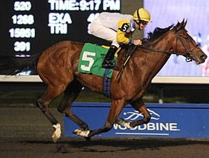 Impossible Time wins the 2010 Classy 'n Smart Stakes.