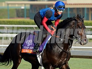 Global Power - Breeders' Cup 2012