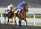Gamilati in the UAE 1000 Guineas