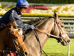 The Pamplemousse with Alex Solis at Santa Anita March 25, 2009