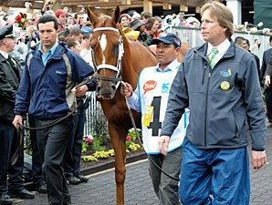 Golden Soul - Kentucky Derby Paddock