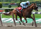 "Casino Drive won the Peter Pan at Belmont Park this past spring. <br><a target=""blank"" href=""http://www.bloodhorse.com/horse-racing/photo-store?ref=http%3A%2F%2Fpictopia.com%2Fperl%2Fgal%3Fprovider_id%3D368%26ptp_photo_id%3D4477198%0D%0A%26ref%3Dstory"">Order This Photo</a>"