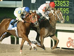 Hear No Angel wins the 2010 Cocodrie Stakes.