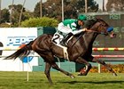 Lady of Shamrock will try to add another Grade I to her resume in the Del Mar Oaks.