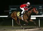 Positive Response won the John Battaglia Memorial Stakes at Turfway by 7 lengths.