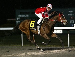 Positive Response wins the 2011 John Battaglia Memorial.