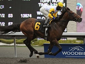 Check Your Soul wins the 2011 Wando Stakes.