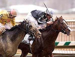 Bustin Stones winning the Gen. George Handicap (gr. II) at Laurel Park.