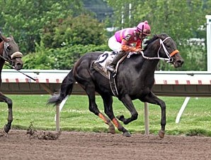 Pants On Fire wins the 2012 Skip Away Stakes.