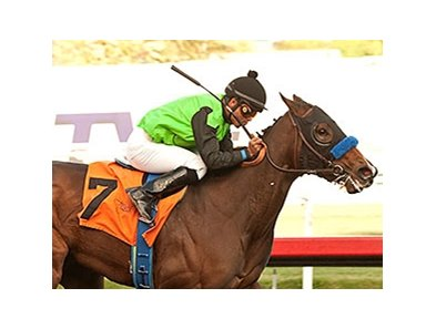 Streaming takes the Hollywood Starlet Stakes to become a grade I winner in her second start.