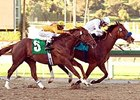 "Well Armed (inside) holds off Heatseeker in the San Antonio.<br><a target=""blank"" href=""http://www.bloodhorse.com/horse-racing/photo-store?ref=http%3A%2F%2Fpictopia.com%2Fperl%2Fgal%3Fprovider_id%3D368%26ptp_photo_id%3D3535901%26ref%3Dstory"">Order This Photo</a>"