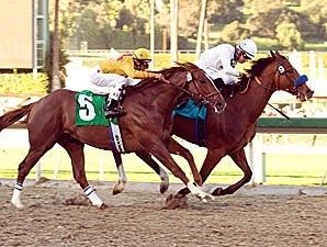 Well Armed (inside) holds off Heatseeker in the San Antonio.