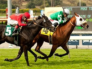 Chips All In wins the 2012 Pasadena.