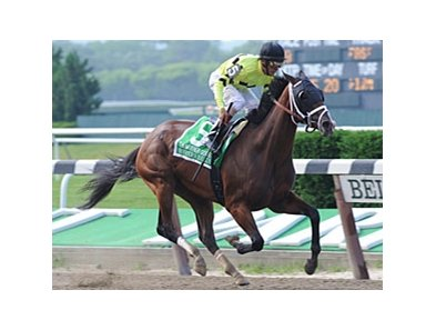 "Mother Goose Stakes winner Buster's Ready is one of the horses included in the Evans dispersal.<br><a target=""blank"" href=""http://www.bloodhorse.com/horse-racing/photo-store?ref=http%3A%2F%2Fpictopia.com%2Fperl%2Fgal%3Fprovider_id%3D368%26ptp_photo_id%3D9577096%26ref%3Dstory"">Order This Photo</a>"