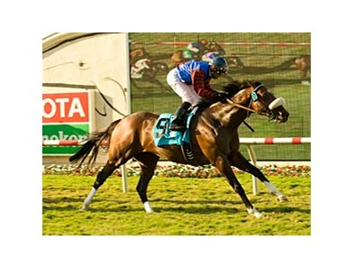"Ferneley and Joel Rosario take the Del Mar Mile.<br><a target=""blank"" href=""http://www.bloodhorse.com/horse-racing/photo-store?ref=http%3A%2F%2Fpictopia.com%2Fperl%2Fgal%3Fprovider_id%3D368%26ptp_photo_id%3D8443536%26ref%3Dstory"">Order This Photo</a>"