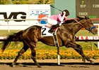 "Cost of Freedom takes on 7 in the Sunshine Millions Sprint at Santa Anita.<br><a target=""blank"" href=""http://www.bloodhorse.com/horse-racing/photo-store?ref=http%3A%2F%2Fpictopia.com%2Fperl%2Fgal%3Fprovider_id%3D368%26ptp_photo_id%3D9299209%26ref%3Dstory"">Order This Photo</a>"