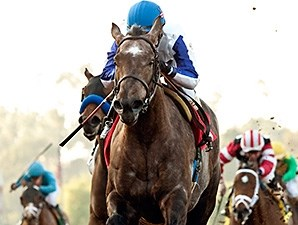 Seduire wins the 2014 Santa Ynez Stakes.
